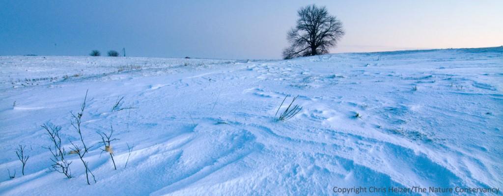 Helzer Prairie - Stockham, Nebraska.  First snow of November, 2011